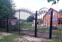 Кованые ворота 3